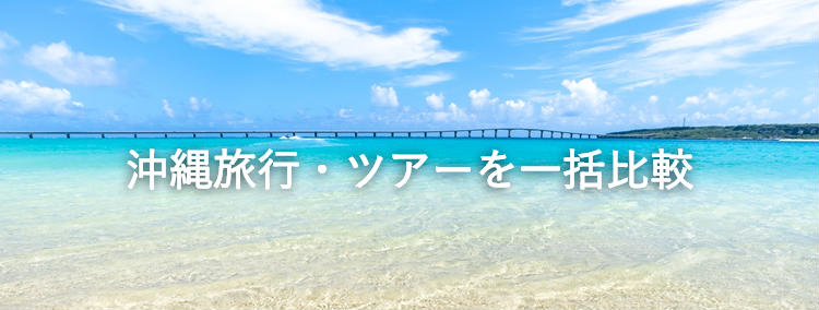 沖縄ツアー 1月