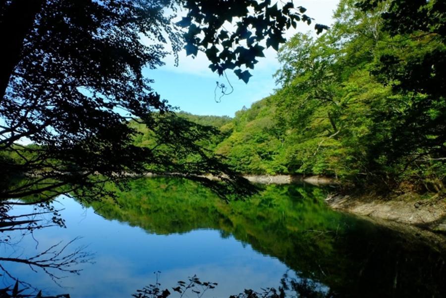 日本世界自然遺產交通大探索 白神山地 Tabirai Japan