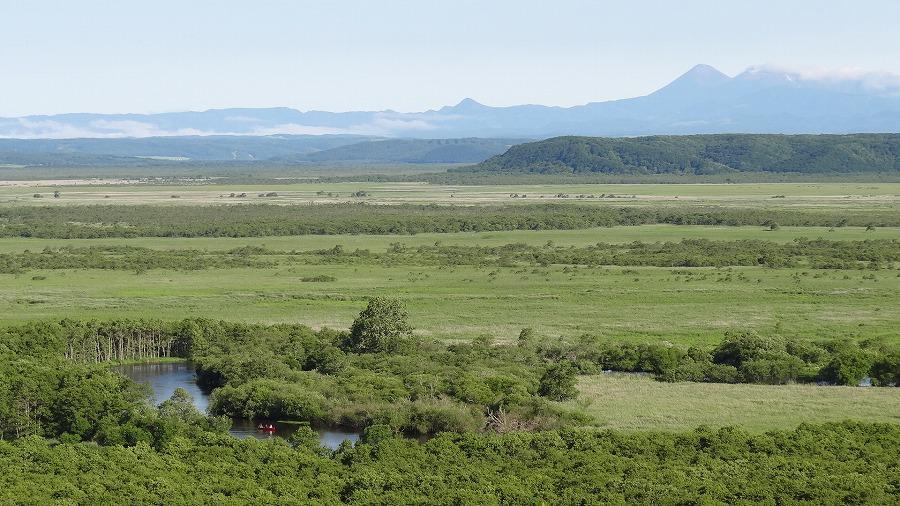 湿原 釧路