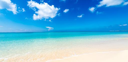 冬でも沖縄旅行が楽しめる 沖縄ツアー特集|たびらい沖縄ツアー